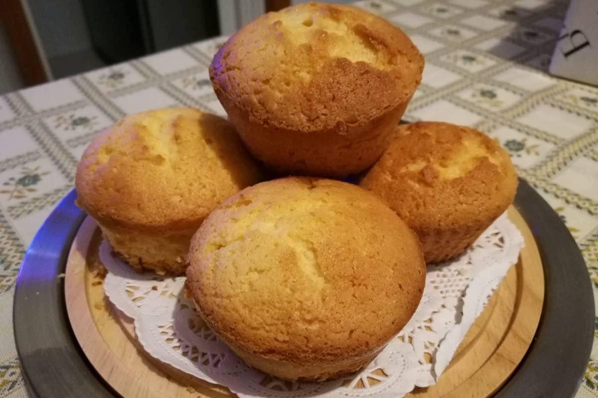 Muffins au citron moelleux facile