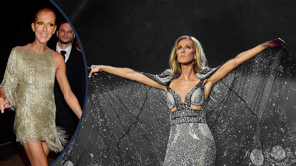 Céline Dion : ultra sexy en décolleté ! La toile s'enflamme