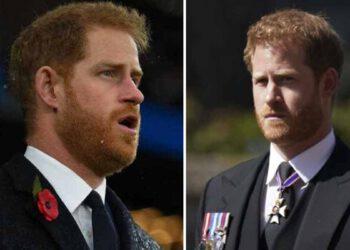 Harry de nouveau papa ce message laconique du prince Charles pour la naissance du bébé scandalise la Toile